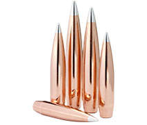 <span>Hornady<sup>®</sup></span> Bullets preview image