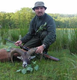 Mouflon hunting