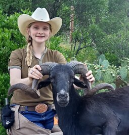 Texas Hill Country Ram Hunt