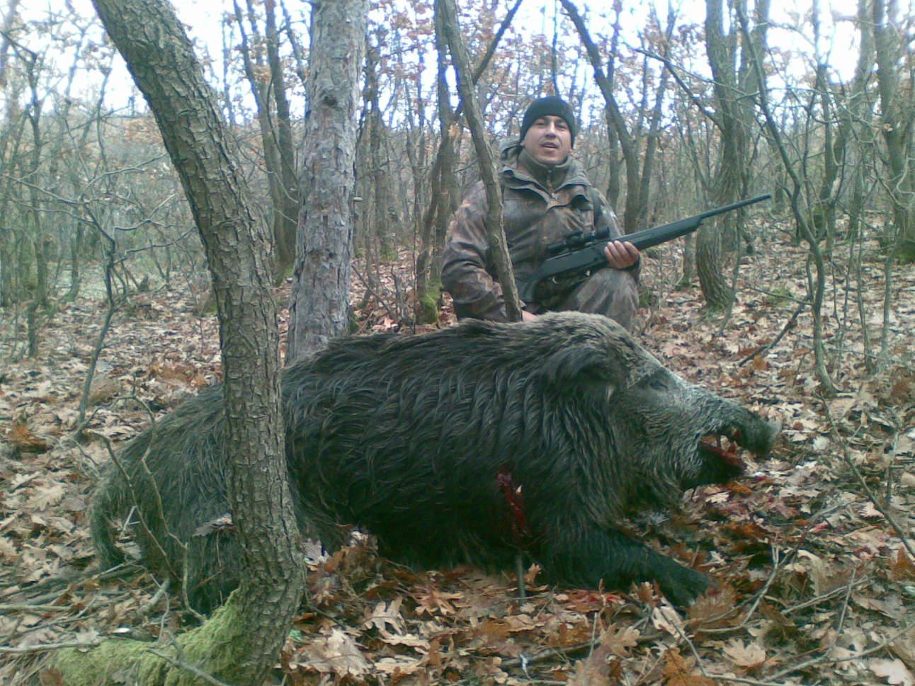 Big Wild Boar - Hornady Manufacturing, Inc Giant Wild Boar Photos