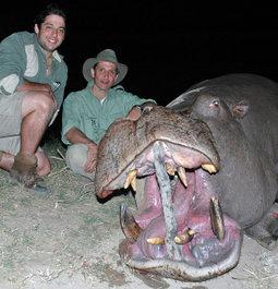 3rd African Safari