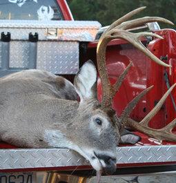 Martin County NC 10 point