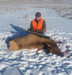 My first elk