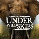 Under Wild Skies Logo