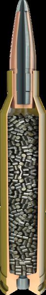 1410992694 American Whitetail cutaway.0df6a748 - 270 Winchester, 130 Grain SP InterLock, 1000RDS