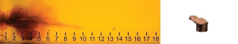 Wallboard gel image