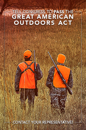 Hornady® Supports Passage of Great American Outdoors Act