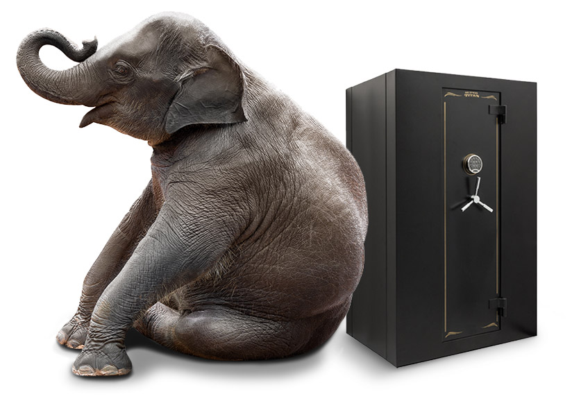 Photo of Safes with Elephant